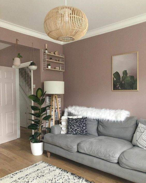 a stylish mauve living room with a grey sofa, a shelf and a floor lamp, some plants and a wooden pendant lamp