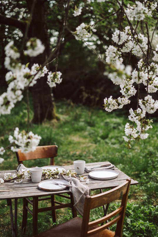 a vintage-inspired dining zone with a wooden table and vintage chairs placed under the blooming trees