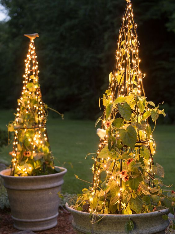 a creative light idea - trellises with climbing plants and lights are a catchy and interesting idea for outdoor spaces
