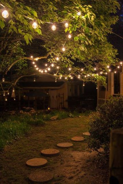 string lights hanging right on the trees will make your backyard look magical and beautiful