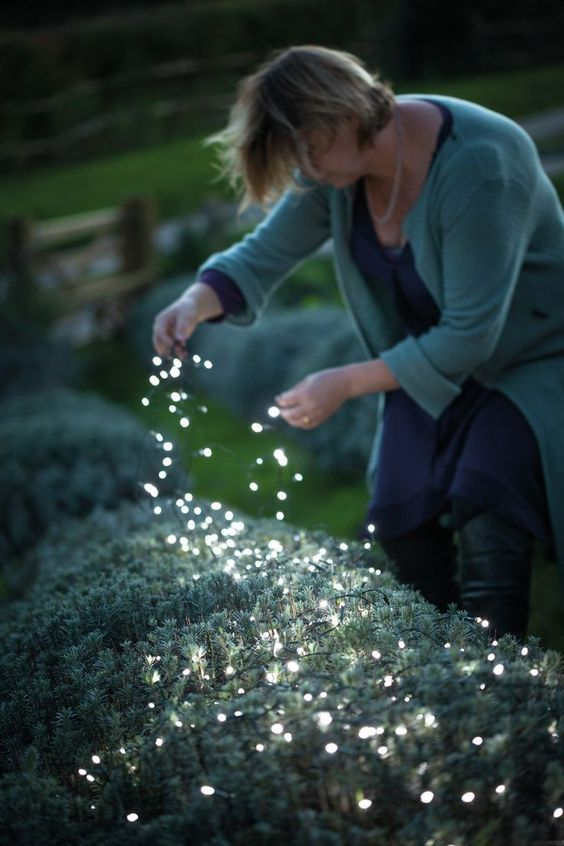 place fairy lights right on the plants to make your backyard lit up and make it look magical at the same time