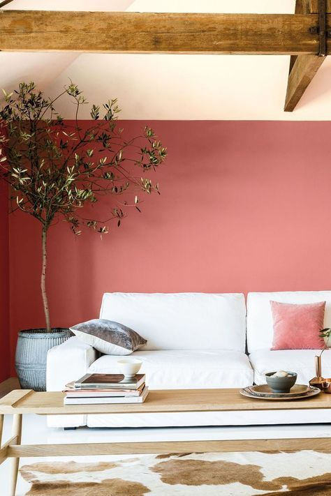 a welcoming living room with a pink accent wall, wooden beams, a white sofa, a long coffee table, a cowhide rug and a potted tree looks fresh
