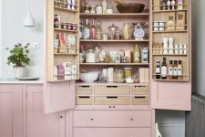 31 a pink mini pantry built into the kitchen is a lovely idea to store a lot of things and organize them at your best