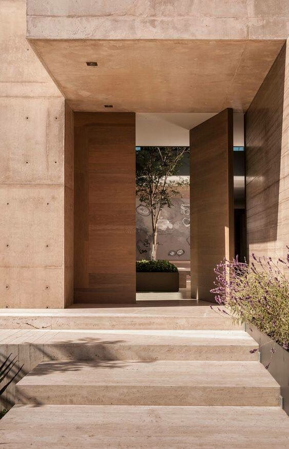 a rich-stained wood pivot entrance door is a lovely idea for a modern entrance, and it will make a statement
