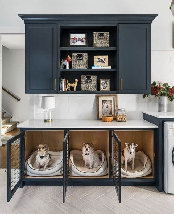 a kitchen with graphite grey cabinetry and a lower cabinet turned into a triple sog crate with soft beds inside