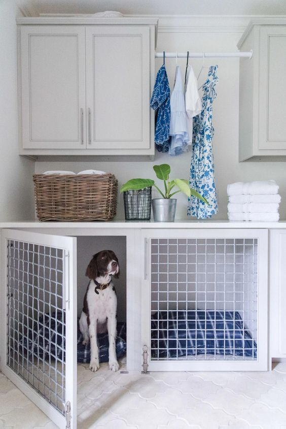 a neutral laudnry room with a lower cabinet turned into a dog crate with bold blue printed mattresses is a cool idea