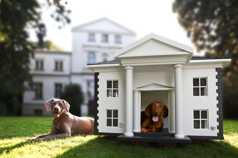 4 Amazing Luxury Dog Houses by Best Friend\u2019s HOME  DigsDigs
