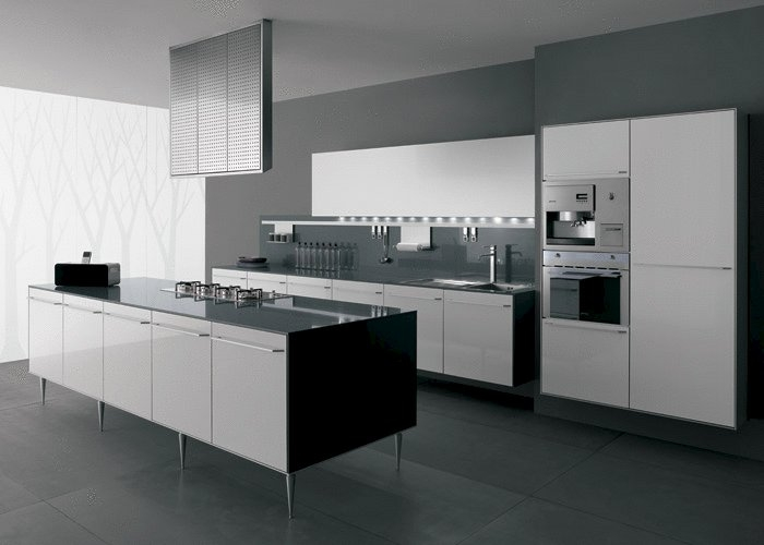 Luxury-minimalist-kitchen-design-with-cupboards-large-island-stoves-and-absorber
