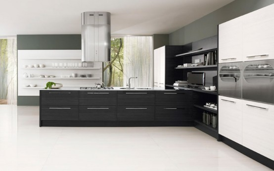 Contemporary Black and White Kitchen