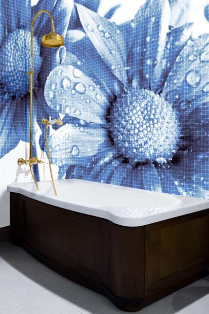 Glass Mosaic Tiles With Cool Images For Bathroom By Glassdecor