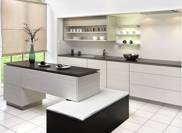New modern black and white kitchen designs from for Simple modern kitchen cabinets