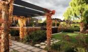Romantic Garden Design Around Victorian Era Home