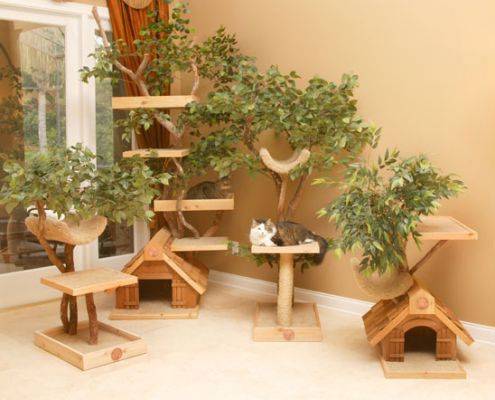 Modern Design Home Plans on Unique Cat Tree Houses With Real Trees From Pet Tree House   Digsdigs