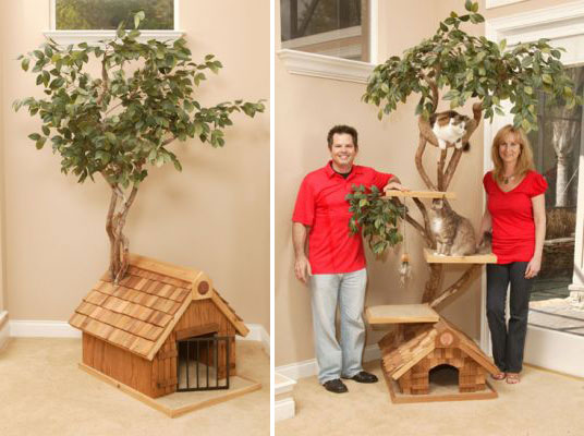 Unique Cat Tree Houses With Real Trees From Pet Tree House also 197243658652514706 further Select  forts Bed Offers Good Night Sleep together with 10 Unique And Creative Children Room Designs additionally Space Saving Ideas For Small Kids Rooms. on s give your kids the coolest furniture with these