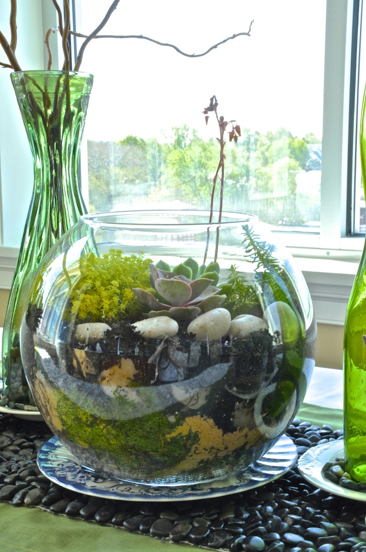 45 adorable spring terrariums for home d cor digsdigs