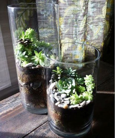 45 Adorable Spring Terrariums For Home D 233 Cor Digsdigs