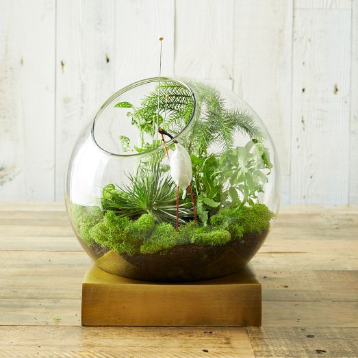 45 adorable spring terrariums for home d cor digsdigs. Black Bedroom Furniture Sets. Home Design Ideas