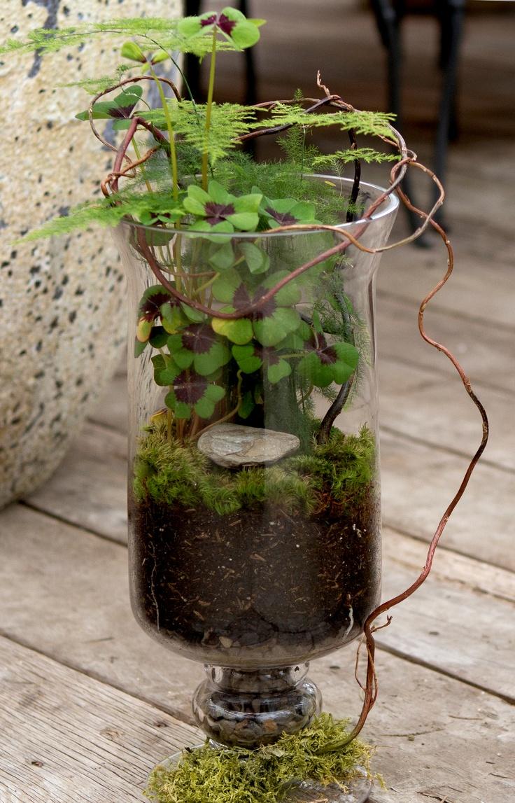 45 adorable spring terrariums for home d cor digsdigs. Black Bedroom Furniture Sets. Home Design Ideas