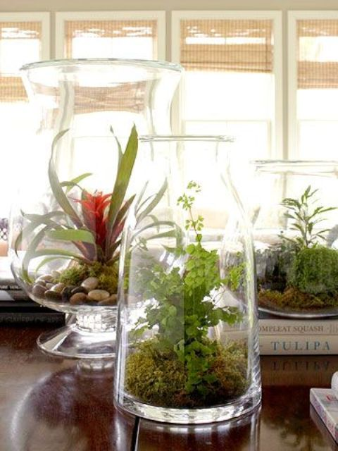 Adorable Spring Terrariums For Home Decor