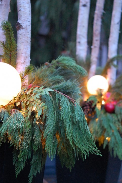 Cover garden lights with pine trimmings to set a celebratory tone for the whole backyard.
