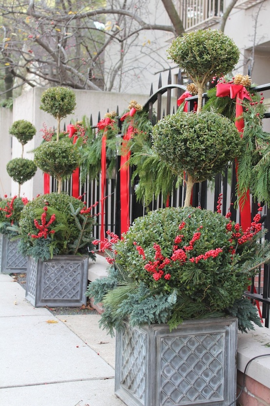 Take your outdoor evergreen decor to the next level by adding dozens of red ribbons and cranberries.