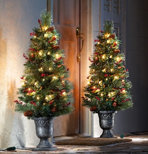 Leave two fully decorated Christmas trees framing your front door for a classic display you can appreciate from outside.