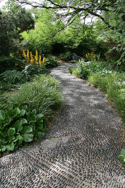 a simple black pebble garden pathway is a practical idea that highlights the greenery that lines it up