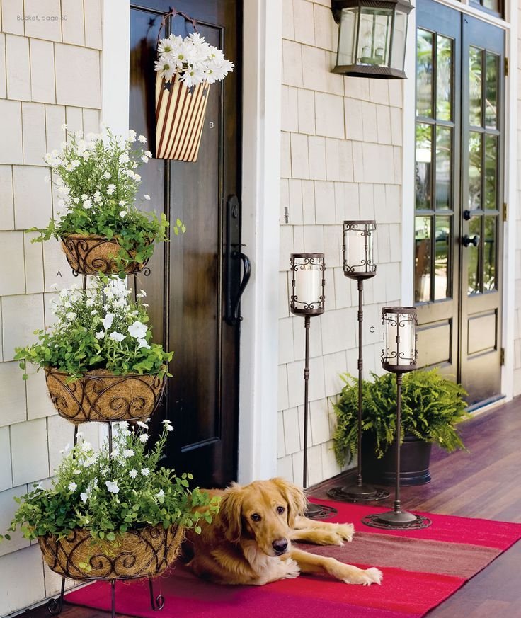 white potted blooms, greenery and a basket with white blooms for a slight spring like feel in the space