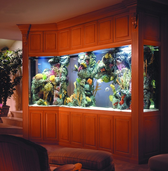 a large aquarium clad in rich-stained wood is a great alternative to a TV in your living room