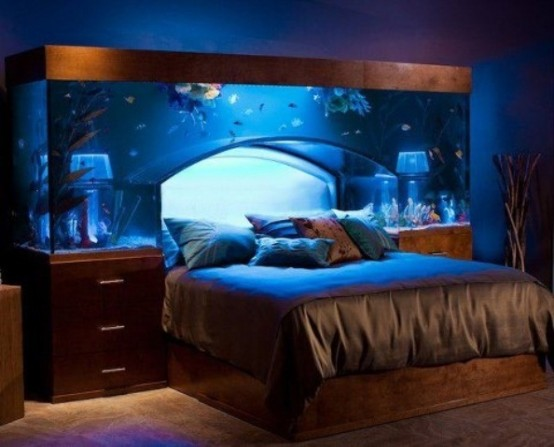 a gorgeous aquarium over the bed guarantees relaxation before you fall asleep and sweet dreams