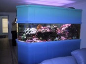 a large and long aquarium clad with panels works as a space divider between the living and dining room