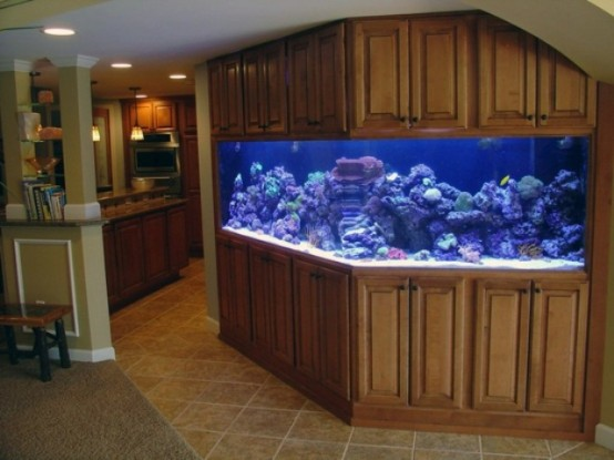 an awkward nook in between the spaces is taken by a large aquarium with lights clad with wooden panels