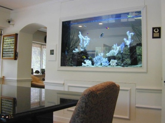 an aquarium built into the wall in the dining room is a beautiful and natural decor feature to try