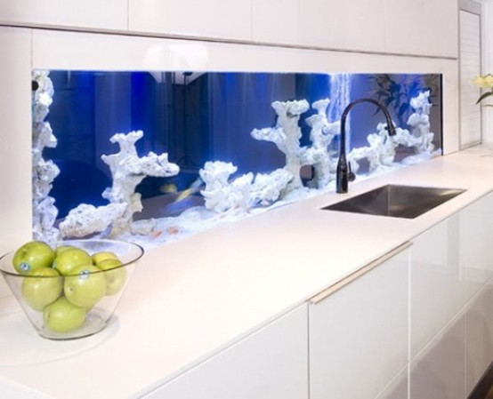skip a usual backsplash in the kitchen and make a gorgeous built-in aquarium with no fish to make your space look unique