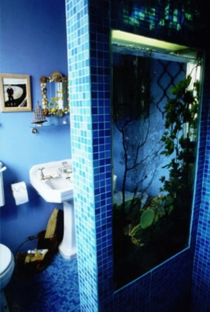 a built-in aquarium is a cool space divider for the shower space is a lovely idea to feel like in the sea