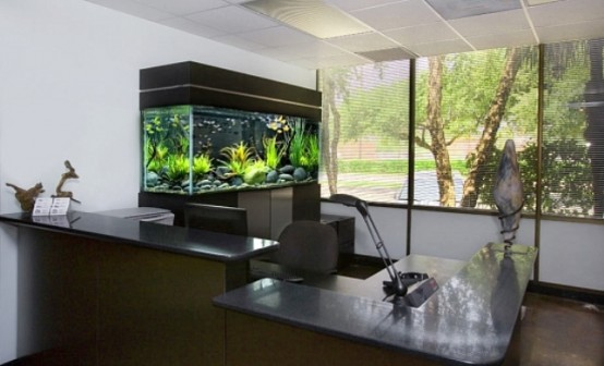 an office space done with an aquarium as a decor feature for a more natural touch to the space