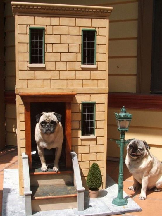 31 Awesome Creative Pet Homes For Any Type Of Interior