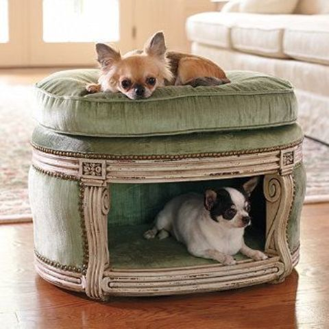 36 Awesome Dog Beds For Indoors And Outdoors
