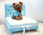 Awesome Dog Beds For Indoors And Outdoors