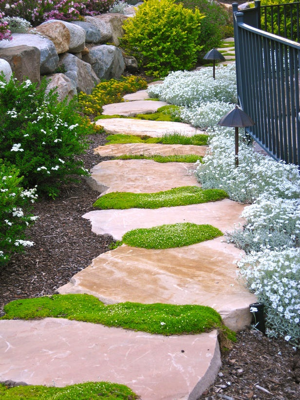 a cool pink stone pathway with green moss growing in between is a chic and bright touch to your outdoor space