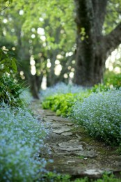 a rough and relaxed garden pathway is amazing for creating a light and natural feeling in your garden