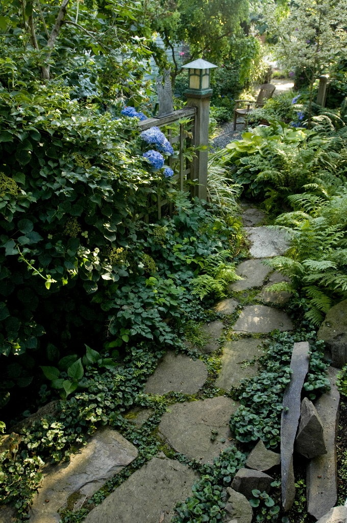a relaxed stone garden path with greenery in between and lush foliage growing around for a calming look