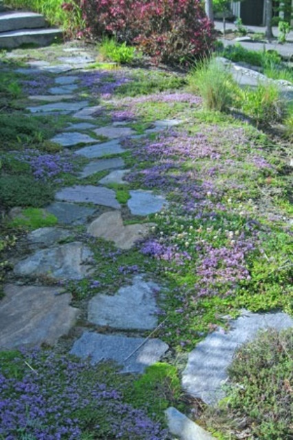 a stone path with greenery and bright pink blooms growing in between, they refresh and brighten up the garden