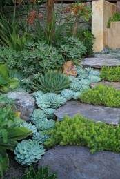 a large stone ladder with succulents on the border and greenery growing in between the steps