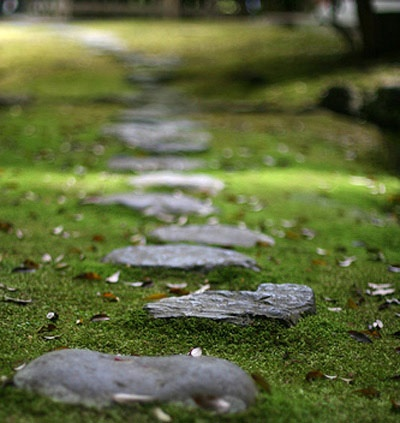 a rough dark stone garden path with moss around looks calming, relaxing and cool