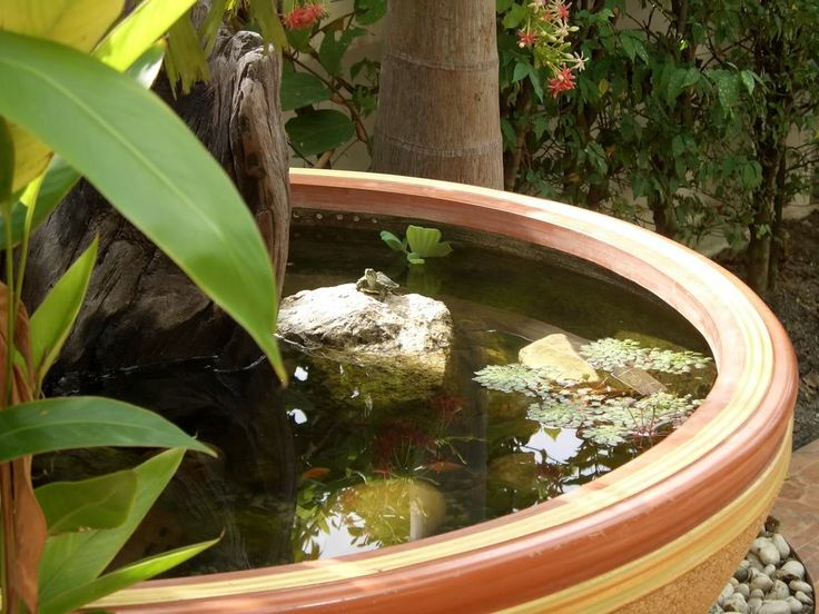 an oversized striped bowl pond with rocks, some greenery and water lilies is a lovely idea for a modern space