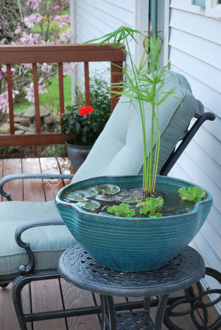 an oversized blue porcelain planter as a mini pond, with greenery and some water plants for natural decor