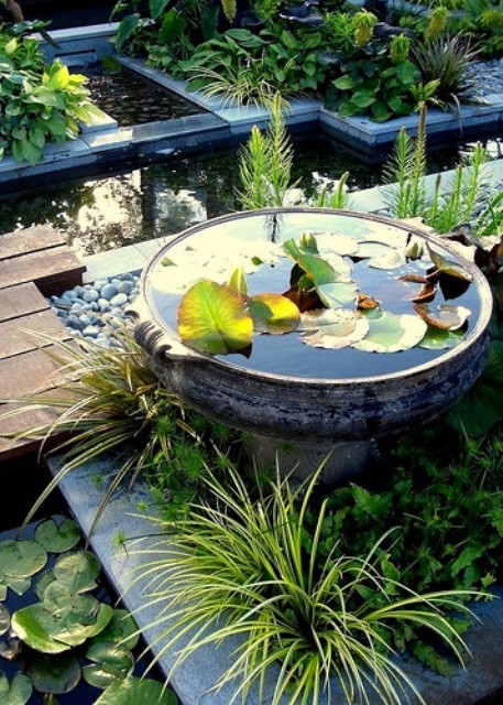 31 awesome mini ponds to complete your outdoor d cor for Garden pond design