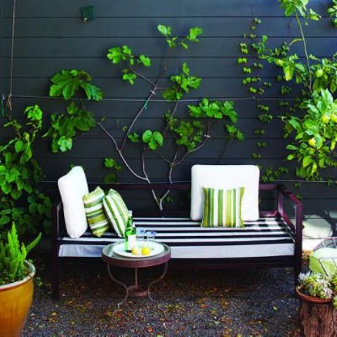a chic and bright small terrace with a purple upholstered bench, a side table and much greenery in planters and on the walls