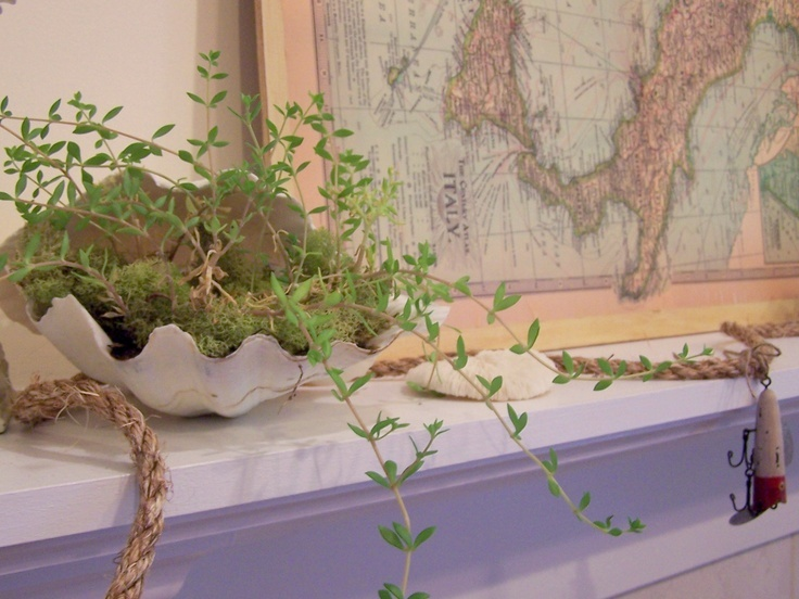 a summer mantel with a map, potted greenery, ropes and seashells feels like beaches